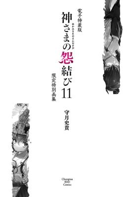 神さまの怨結び 11 | 守月史貴/秋田書店
